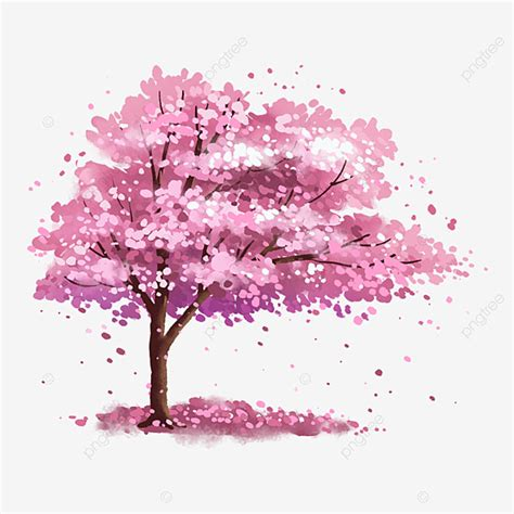 Cherry Blossom Tree Png, Vector, PSD, and Clipart With